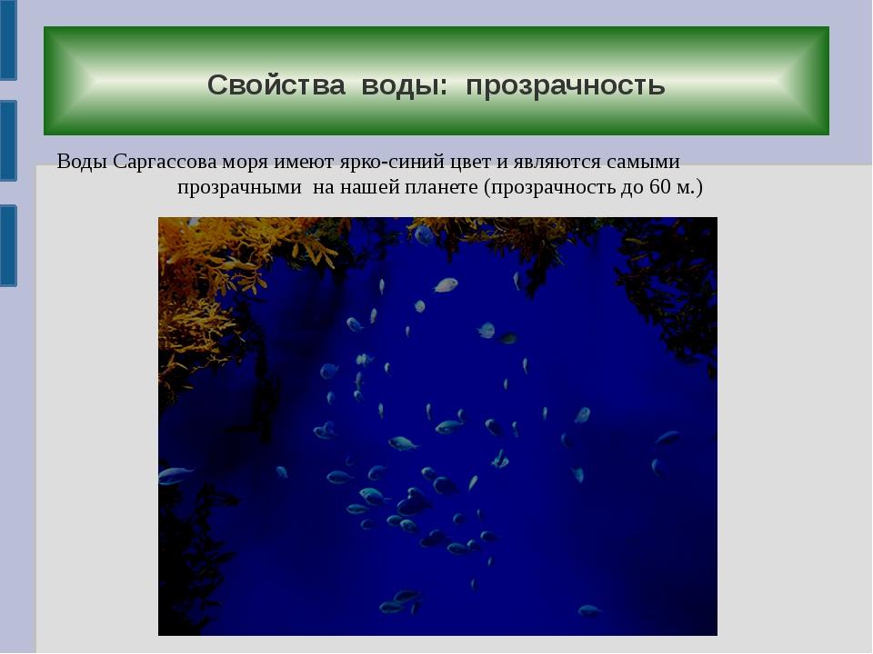 Свойства воды: прозрачность Воды Саргассова моря имеют ярко-синий цвет и явл...