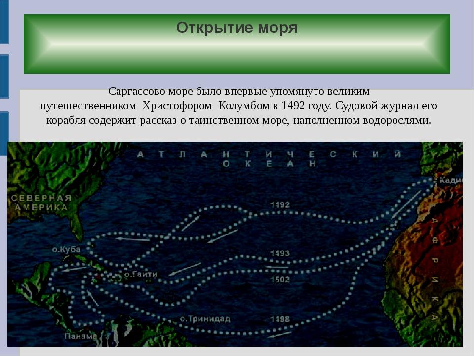 Открытие моря Саргассово море было впервые упомянуто великим путешественником...