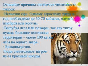 Основные причины снижается численности тигров: Нехватки еды. Одному взрослому