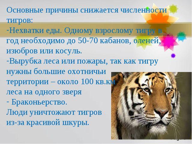 Основные причины снижается численности тигров: Нехватки еды. Одному взрослому...