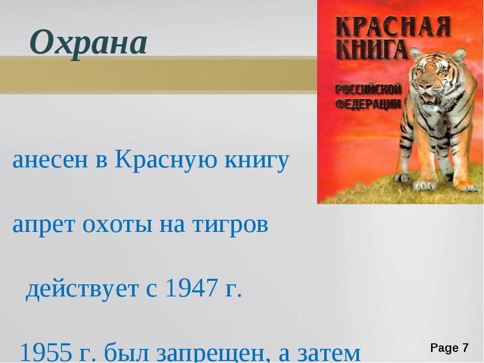 Охрана Занесен в Красную книгу Запрет охоты на тигров действует с 1947 г. В 1...