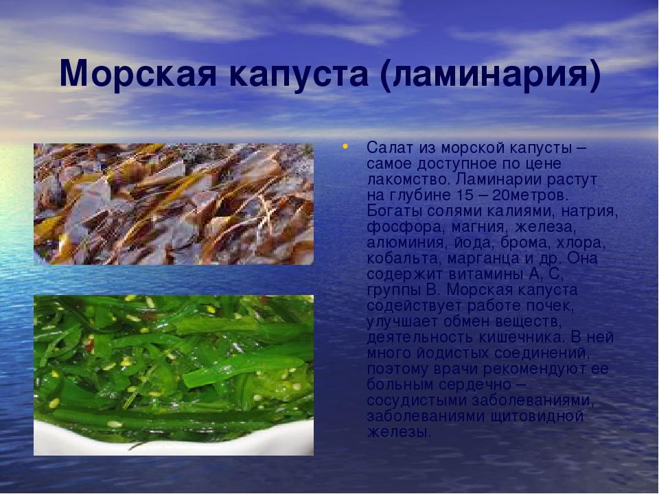 Морская капуста (ламинария) Салат из морской капусты – самое доступное по цен...