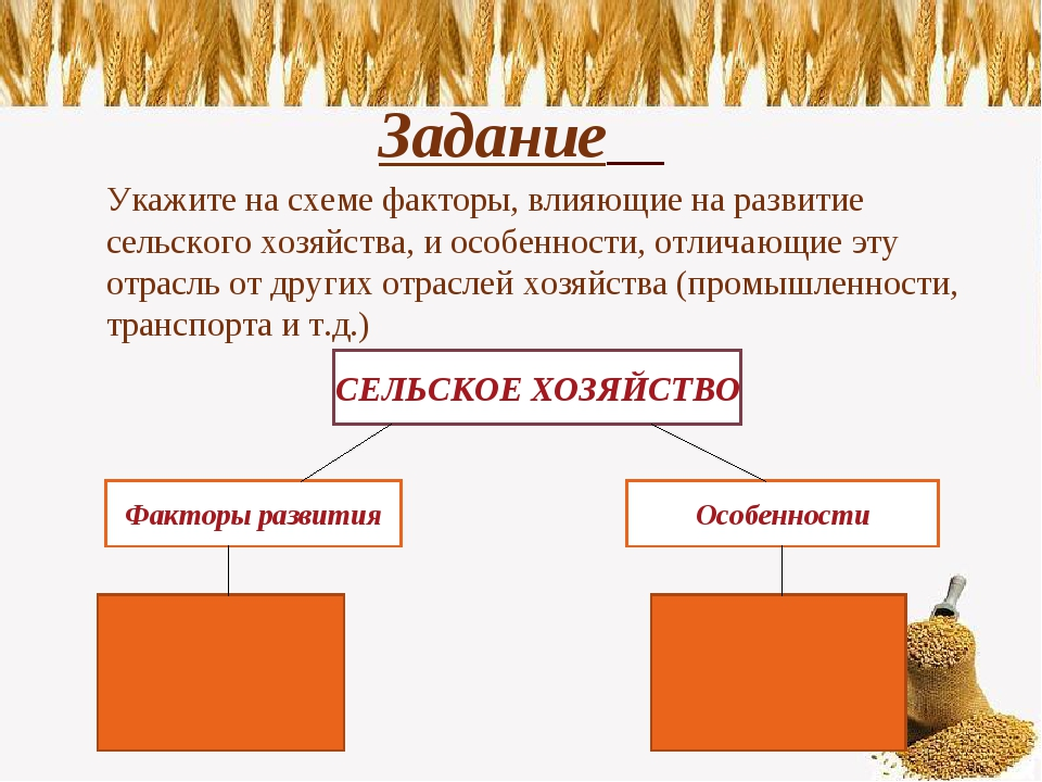 Задание Укажите на схеме факторы, влияющие на развитие сельского хозяйства,...