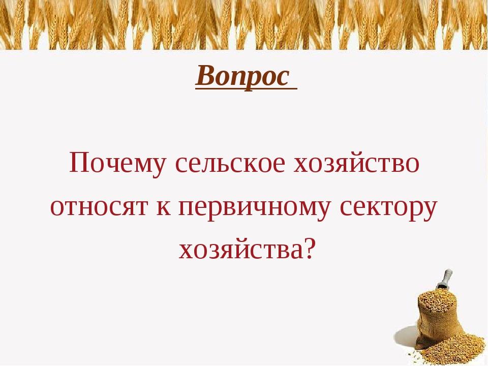 Вопрос Почему сельское хозяйство относят к первичному сектору хозяйства?