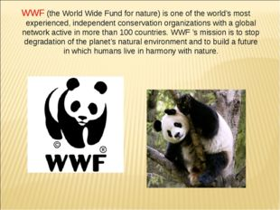 WWF (the World Wide Fund for nature) is one of the world's most experienced,