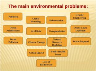 The main environmental problems: Pollution Global Warming Acid Rain Natural R