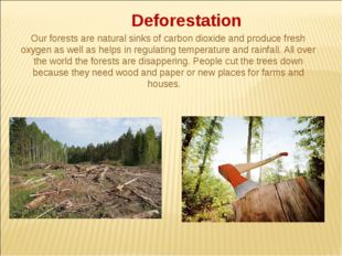 Deforestation Our forests are natural sinks of carbon dioxide and produce fr