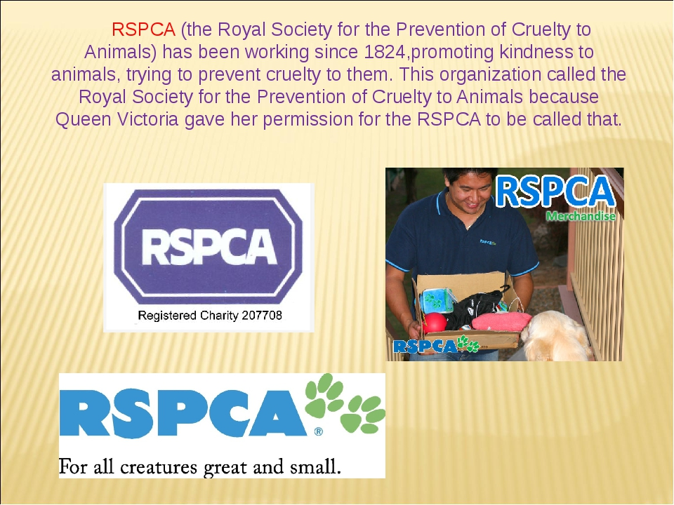 RSPCA (the Royal Society for the Prevention of Cruelty to Animals) has been w...