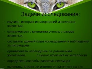 Задачи исследования: изучить историю исследований интеллекта животных; ознако