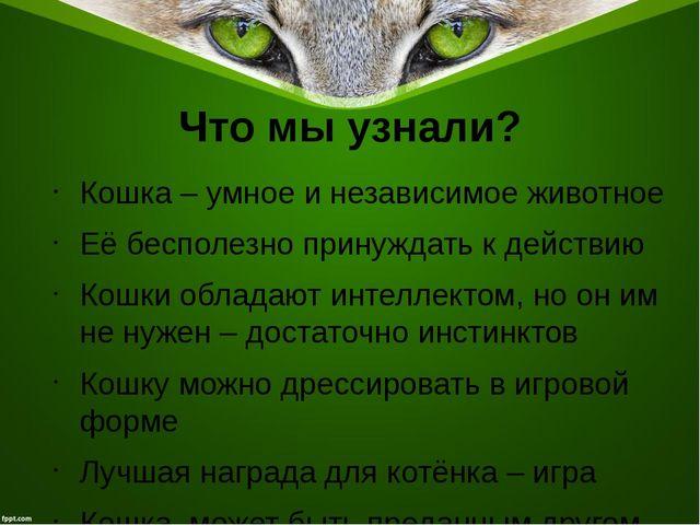 Что мы узнали? Кошка – умное и независимое животное Её бесполезно принуждать...