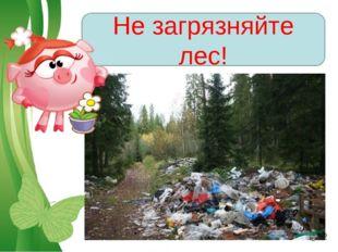 Не загрязняйте лес! Free Powerpoint Templates Page *
