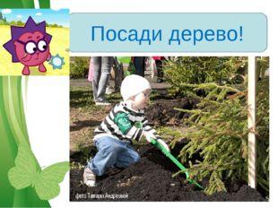 Посади дерево! Free Powerpoint Templates Page *
