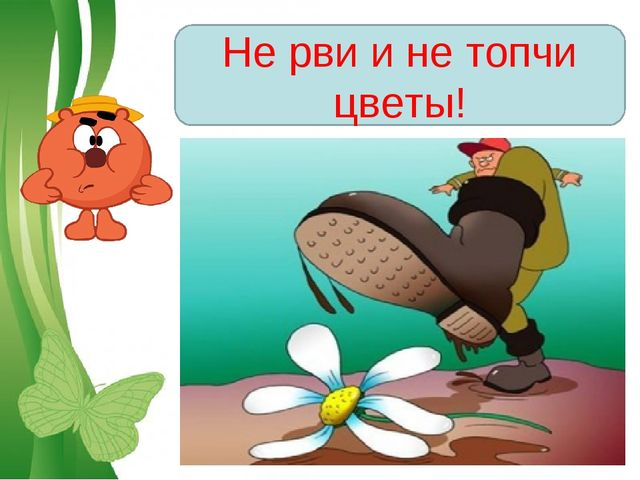 Не рви и не топчи цветы! Free Powerpoint Templates Page *