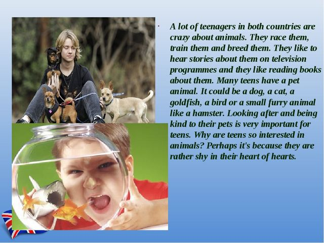 A lot of teenagers in both countries are crazy about animals. They race them,...