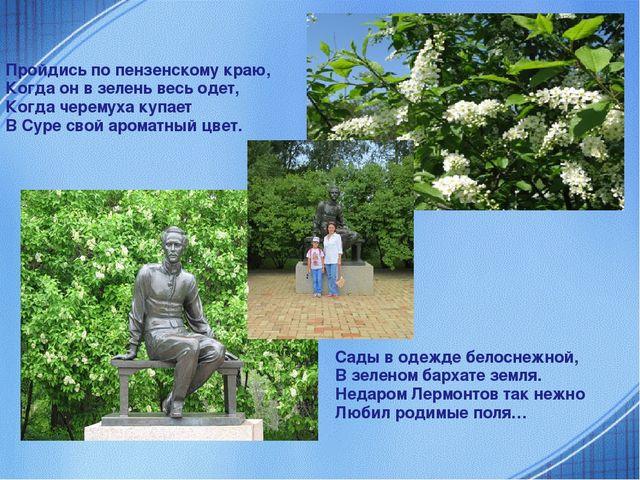 Пройдись по пензенскому краю, Когда он в зелень весь одет, Когда черемуха ку...