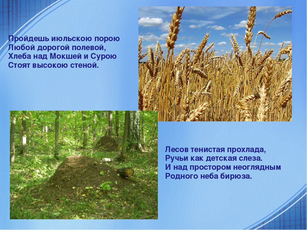 Пройдешь июльскою порою Любой дорогой полевой, Хлеба над Мокшей и Сурою Стоят...
