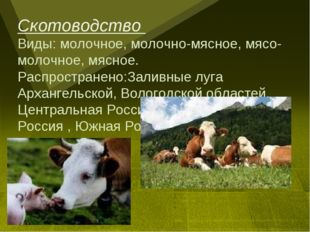 Скотоводство Виды: молочное, молочно-мясное, мясо-молочное, мясное. Распростр