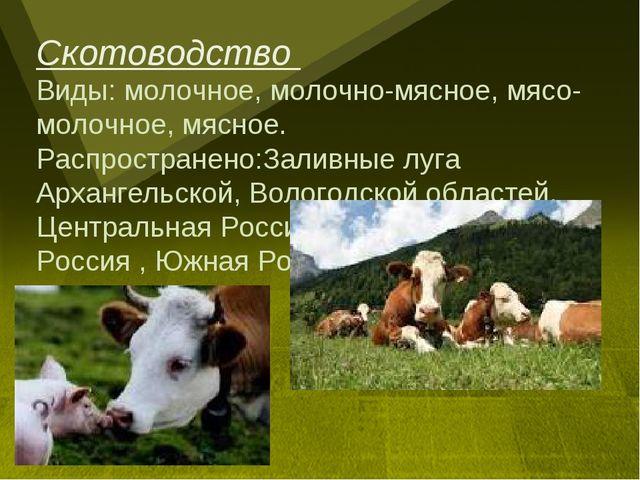 Скотоводство Виды: молочное, молочно-мясное, мясо-молочное, мясное. Распростр...