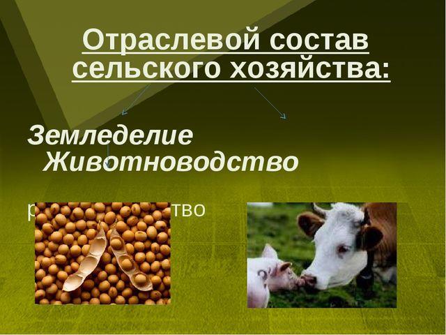Отраслевой состав сельского хозяйства: Земледелие Животноводство растениевод...