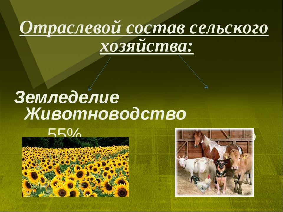 Отраслевой состав сельского хозяйства: Земледелие Животноводство 55% 45%