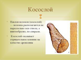 Наклон волокон (косослой) — волокна располагаются не параллельно оси ствола,