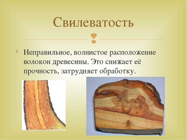 Неправильное, волнистое расположение волокон древесины. Это снижает её прочно...