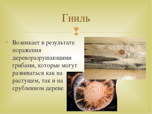 Возникает в результате поражения дереворазрушающими грибами, которые могут ра...
