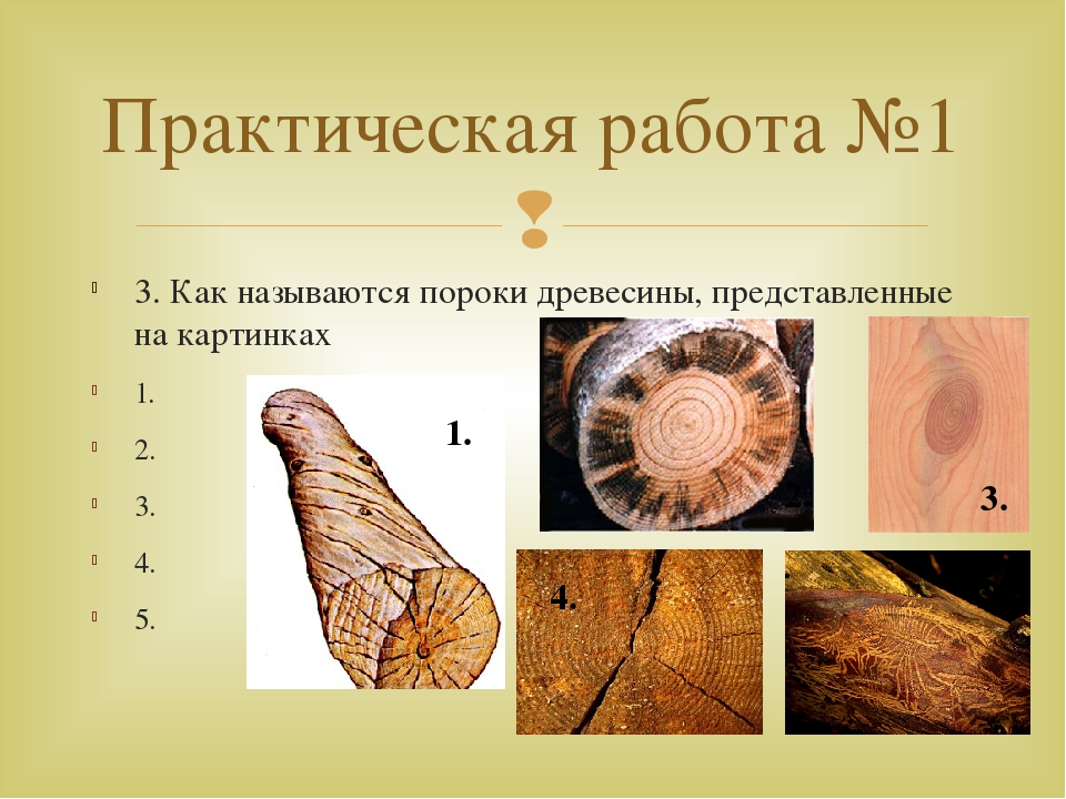 3. Как называются пороки древесины, представленные на картинках 1. 2. 3. 4. 5...
