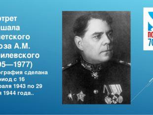 Портрет маршала Советского Союза А.М. Василевского (1895—1977) Фотография сде