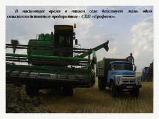 В настоящее время в нашем селе действует лишь одно сельскохозяйственное предп
