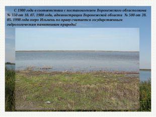 С 1980 года в соответствии с постановлением Воронежского облисполкома № 550