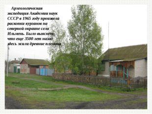 Археологическая экспедиция Академии наук СССР в 1965 году произвела раскопки