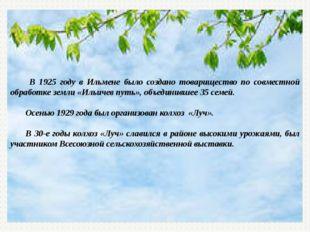 В 1925 году в Ильмене было создано товарищество по совместной обработке земл