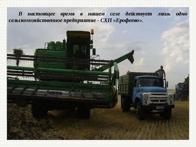 В настоящее время в нашем селе действует лишь одно сельскохозяйственное предп...