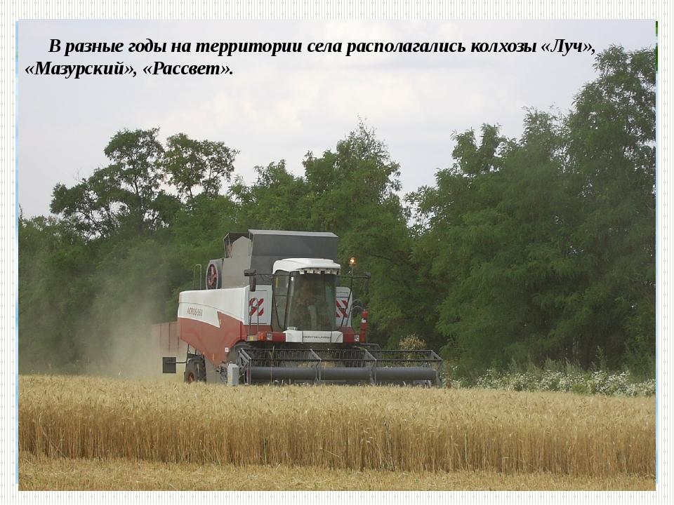 В разные годы на территории села располагались колхозы «Луч», «Мазурский», «...
