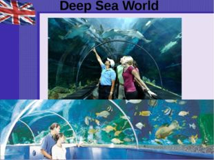 Deep Sea World