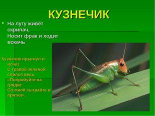 КУЗНЕЧИК Кузнечик прыгнул и исчез С травой зеленой слился весь. «Попробуйте н