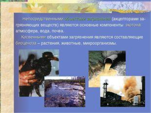 Непосредственными объектами загрязнения (акцепторами за- грязняющих веществ)