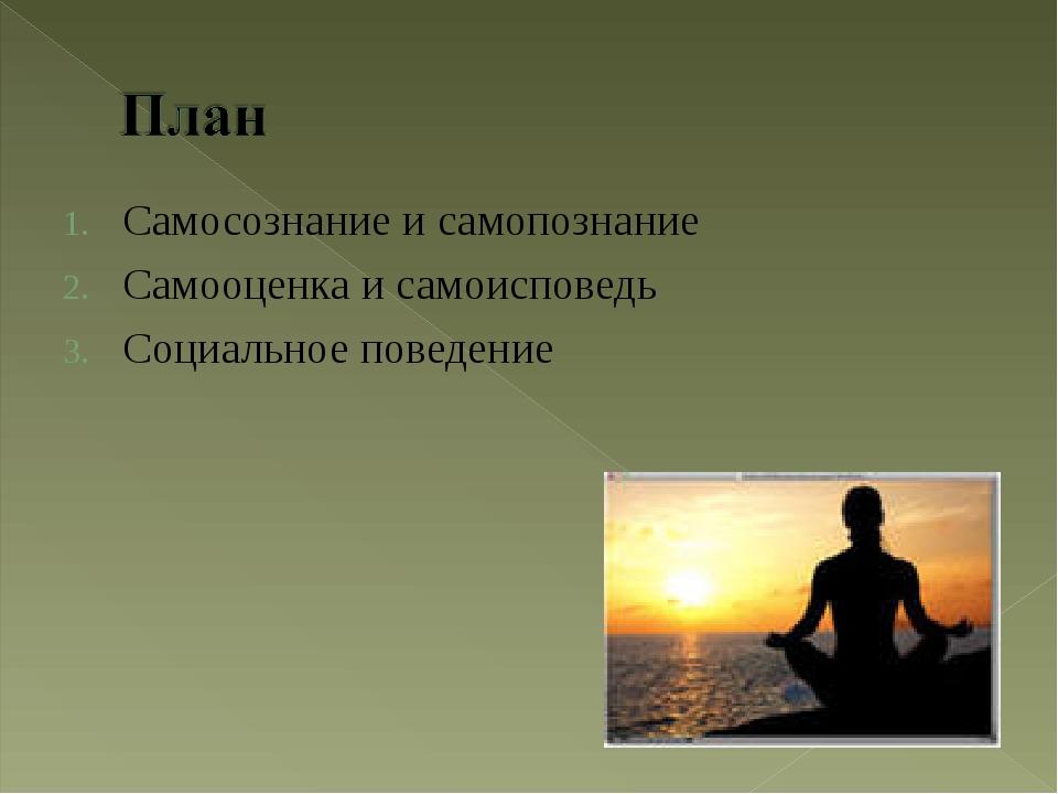 Самосознание и самопознание Самооценка и самоисповедь Социальное поведение