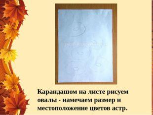 Карандашом на листе рисуем овалы - намечаем размер и местоположение цветов ас