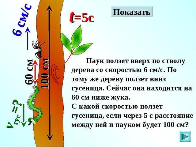 Паук ползет вверх по стволу дерева со скоростью 6 см/с. По тому же дереву по...