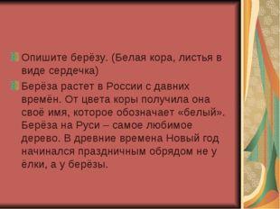 Опишите берёзу. (Белая кора, листья в виде сердечка) Берёза растет в России с