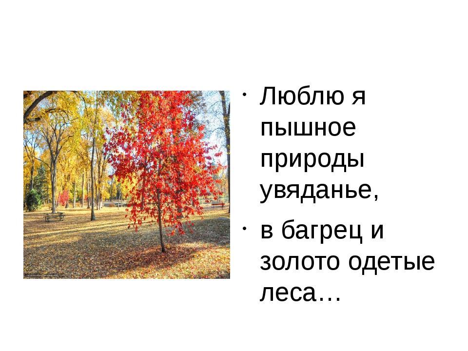 Люблю я пышное природы увяданье, в багрец и золото одетые леса…