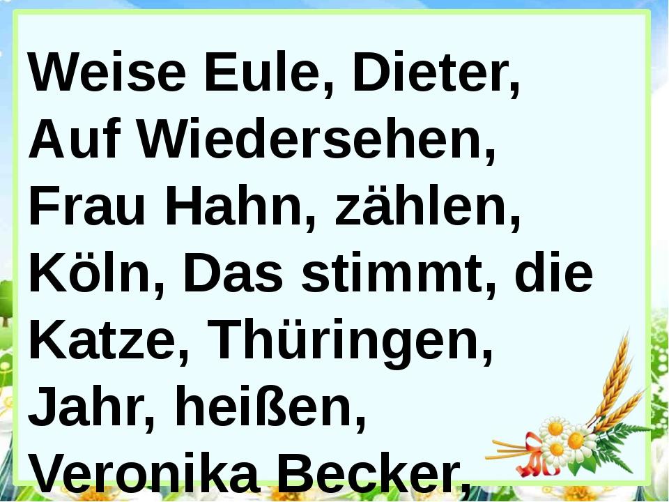 Weise Eule, Dieter, Auf Wiedersehen, Frau Hahn, zählen, Köln, Das stimmt, die...