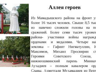 Аллея героев Из Мамадышского района на фронт ушли более 16 тысяч человек. Св