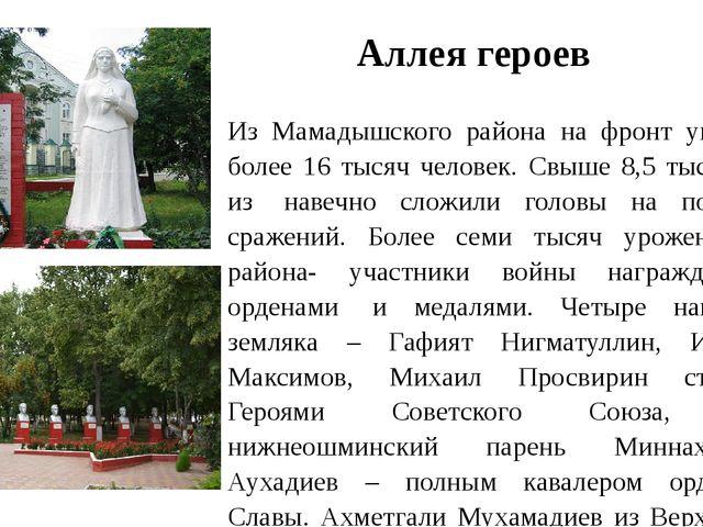 Аллея героев Из Мамадышского района на фронт ушли более 16 тысяч человек. Св...