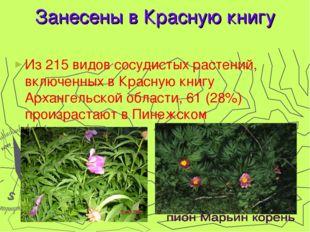 Занесены в Красную книгу Из 215 видов сосудистых растений, включенных в Красн