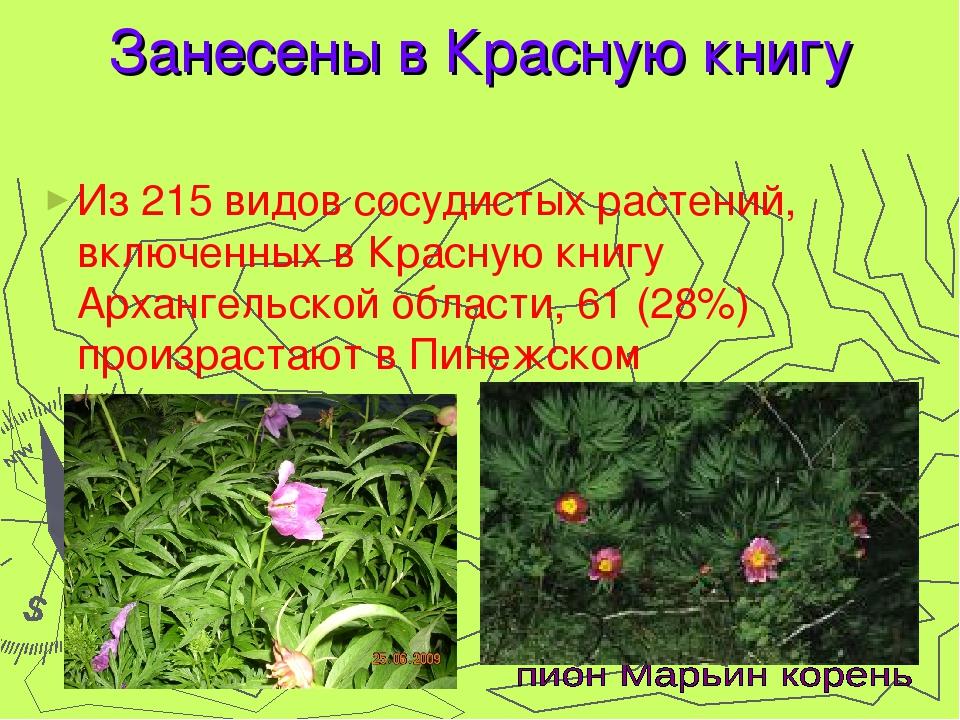 Занесены в Красную книгу Из 215 видов сосудистых растений, включенных в Красн...