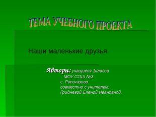 Авторы: учащиеся 1класса МОУ СОШ №3  г. Рассказово.  совместно с учителе