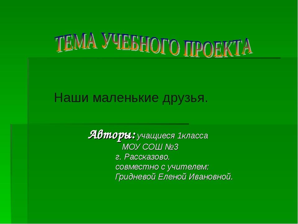 Авторы: учащиеся 1класса МОУ СОШ №3  г. Рассказово.  совместно с учителе...